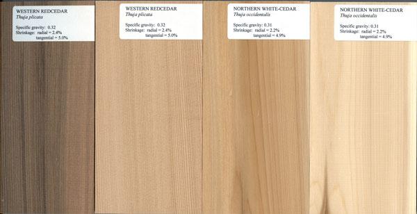 Northern white cedar lumber